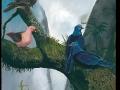 Reunion Pigeons