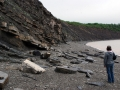 Joggins fossil cliffs