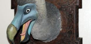 Dodo Bust Sculpture